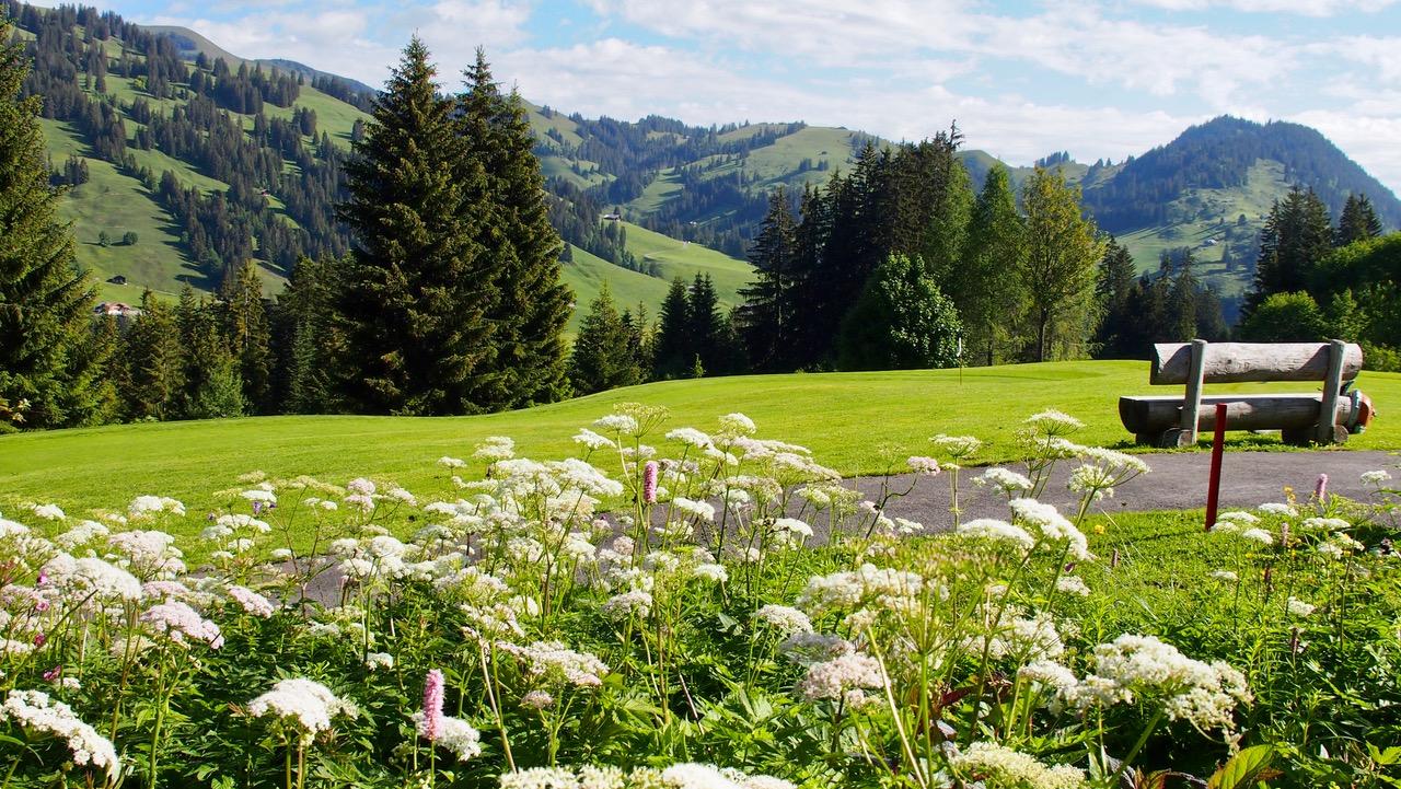 Swiss Alpine Golf Pleasure